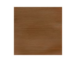 Prof Acrylic 200ML RAW SIENNA 552